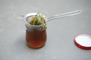 Stevia Auszug